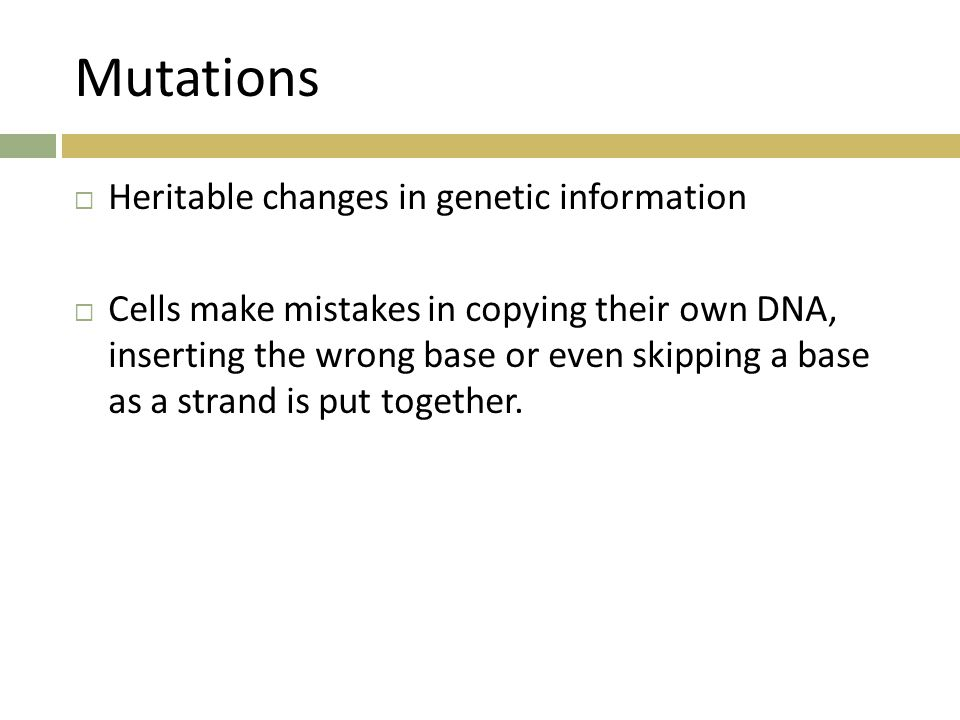 Mutations Heritable changes in genetic information