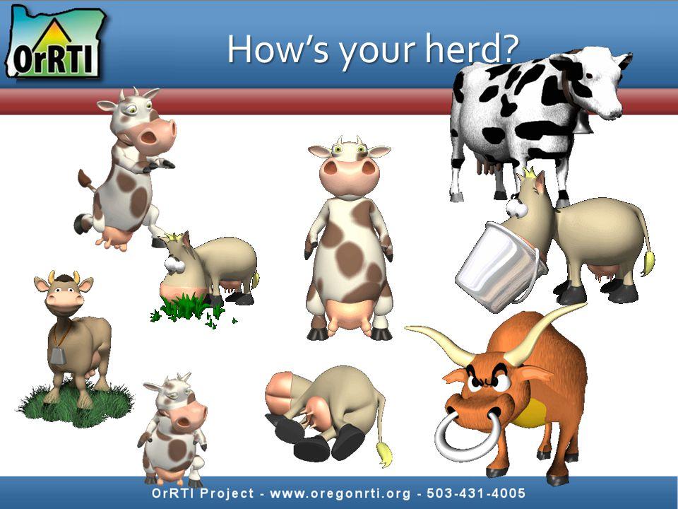 How's your herd