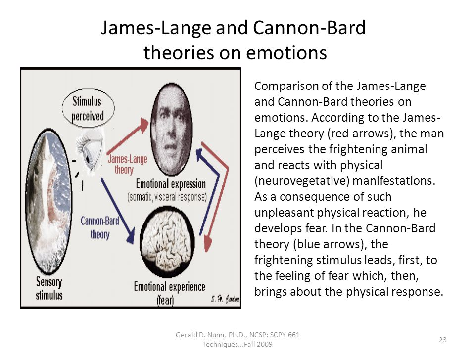 James-Lange and Cannon-Bard theories on emotions