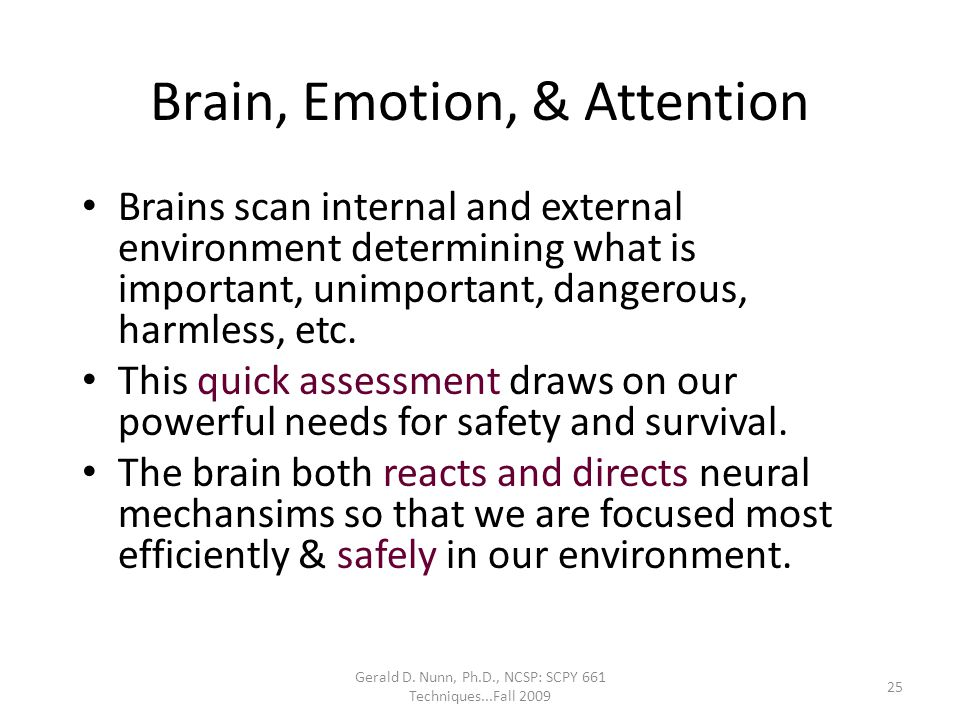 Brain, Emotion, & Attention