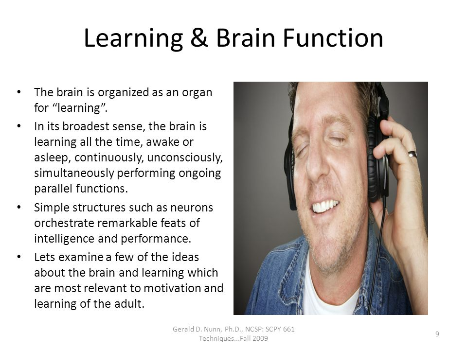 Learning & Brain Function