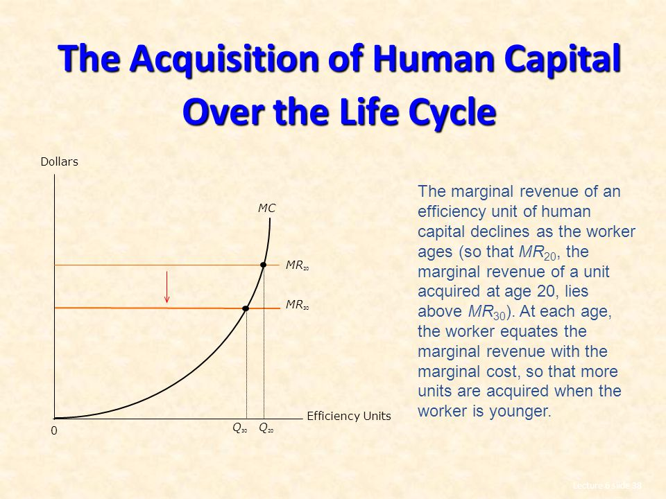 The Acquisition of Human Capital Over the Life Cycle