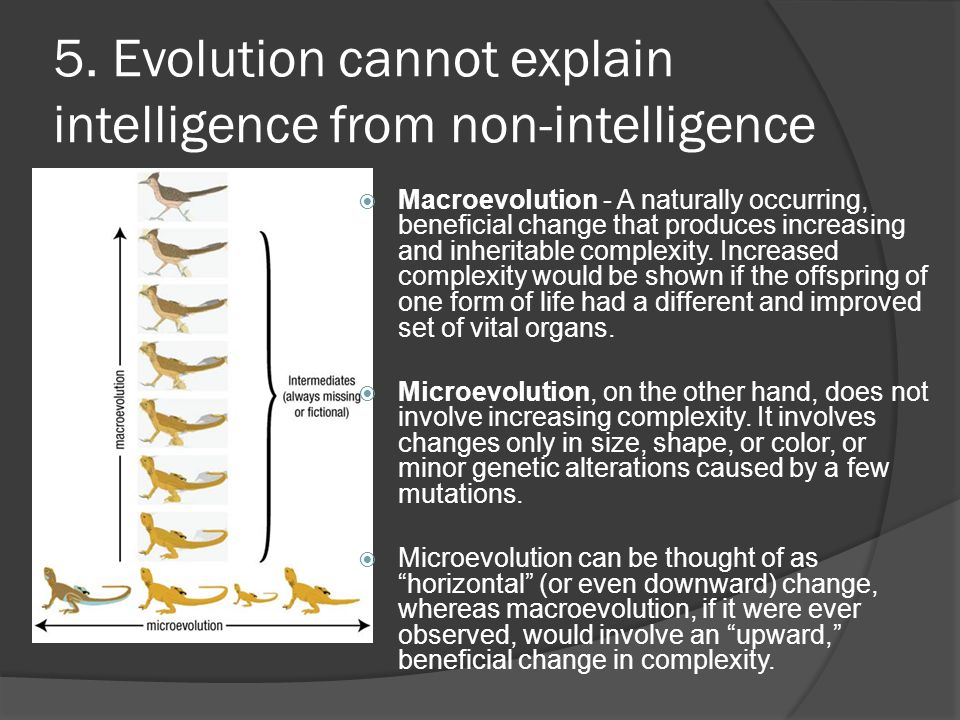 5. Evolution cannot explain intelligence from non-intelligence