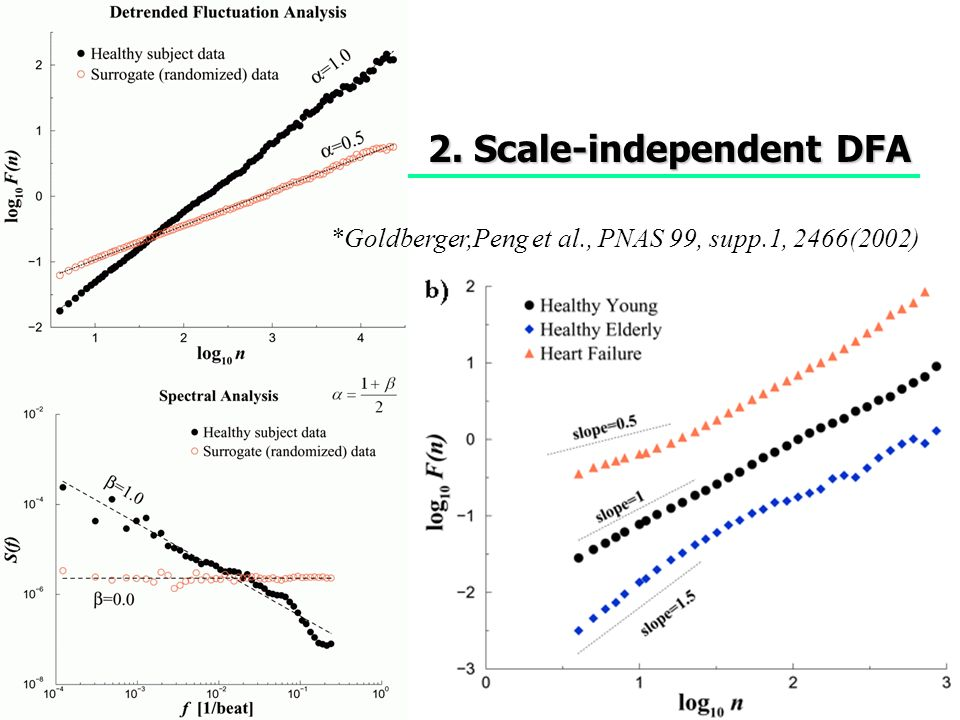 2. Scale-independent DFA