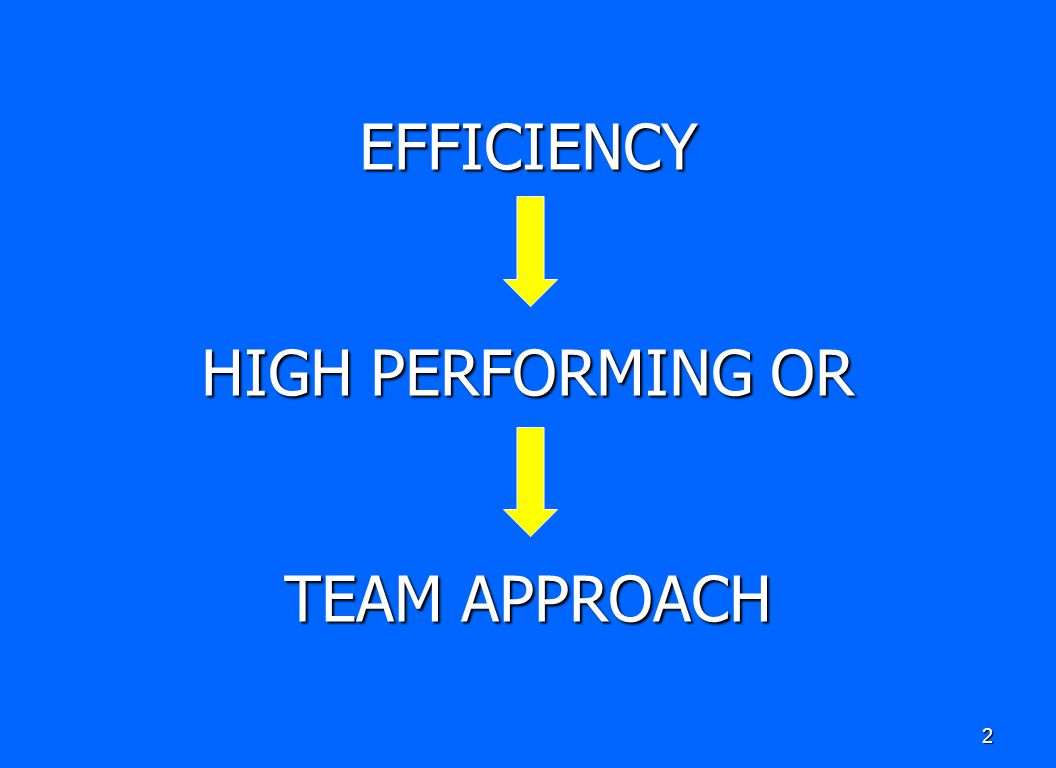 EFFICIENCY HIGH PERFORMING OR TEAM APPROACH