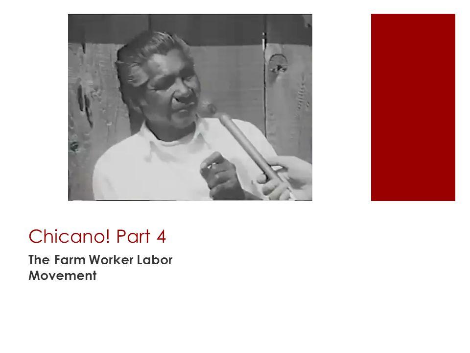 Chicano! Part 4 The Farm Worker Labor Movement
