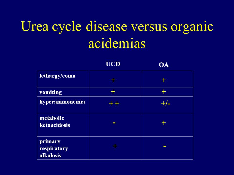 Urea cycle disease versus organic acidemias
