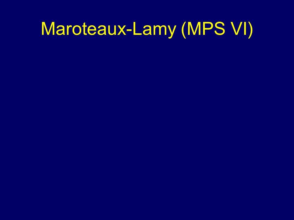 Maroteaux-Lamy (MPS VI)