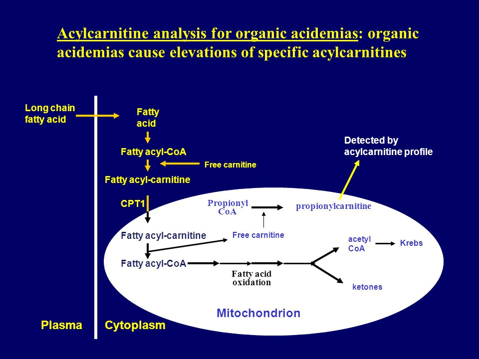 Acylcarnitine analysis for organic acidemias: organic acidemias cause elevations of specific acylcarnitines