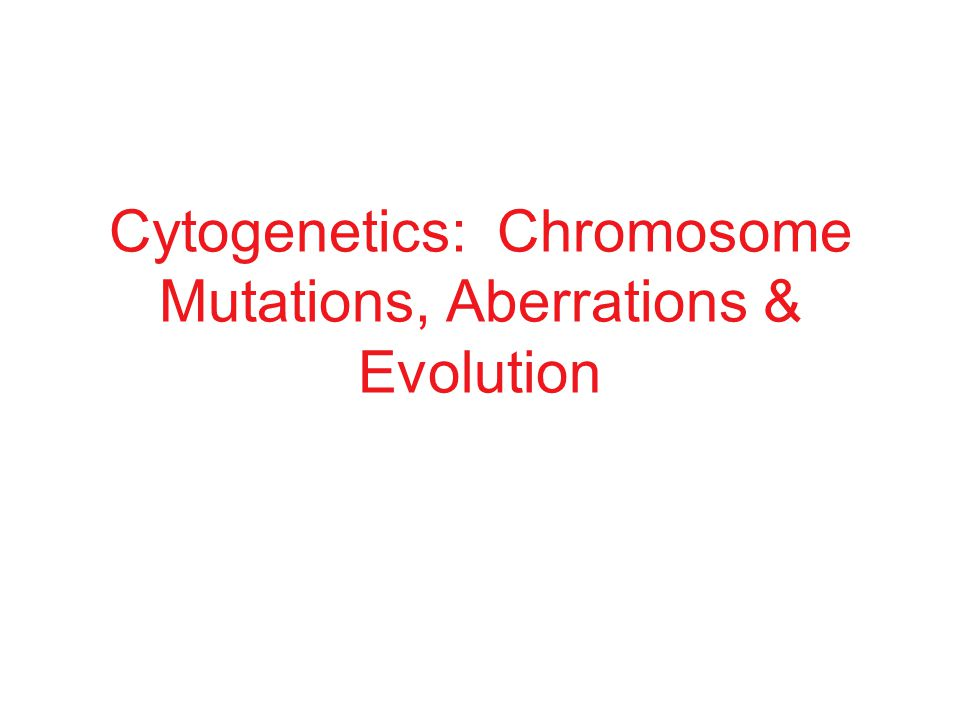 Cytogenetics: Chromosome Mutations, Aberrations & Evolution