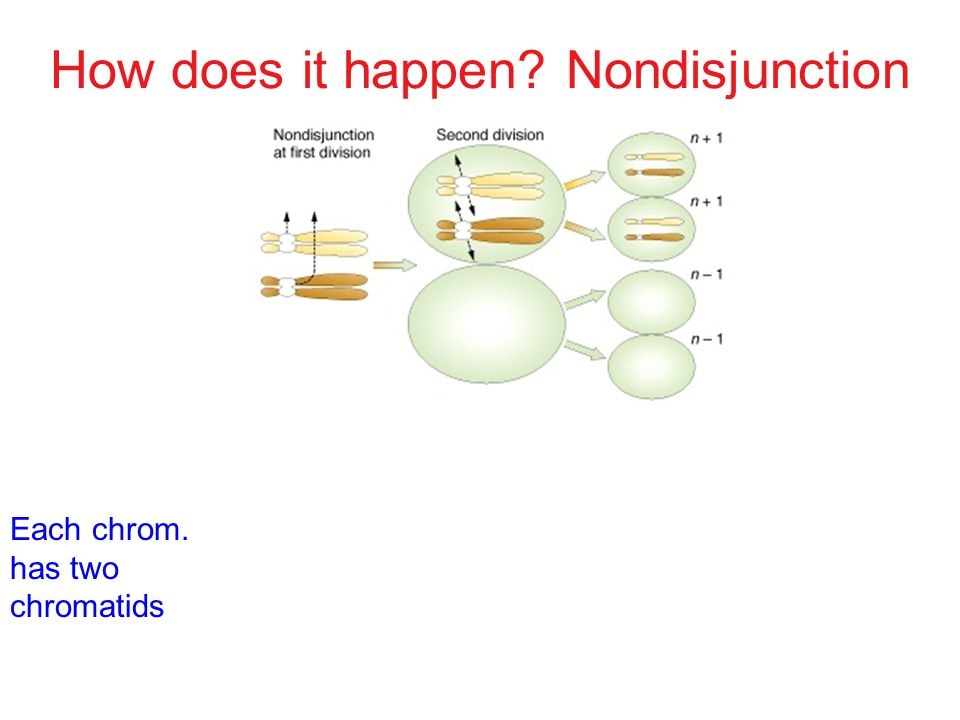How does it happen Nondisjunction