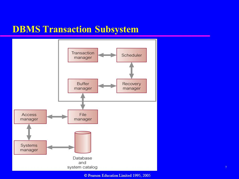 DBMS Transaction Subsystem