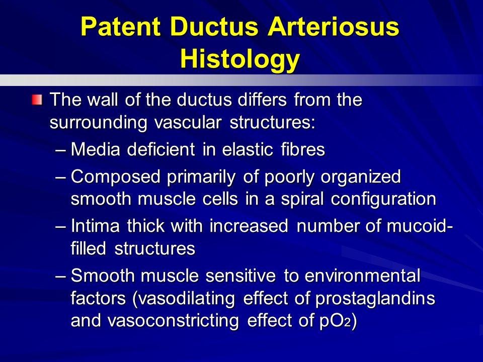 Patent Ductus Arteriosus Histology