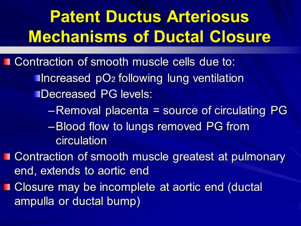 Patent Ductus Arteriosus Mechanisms of Ductal Closure