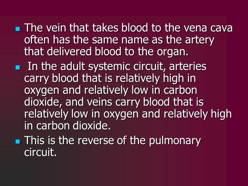The vein that takes blood to the vena cava often has the same name as the artery that delivered blood to the organ.