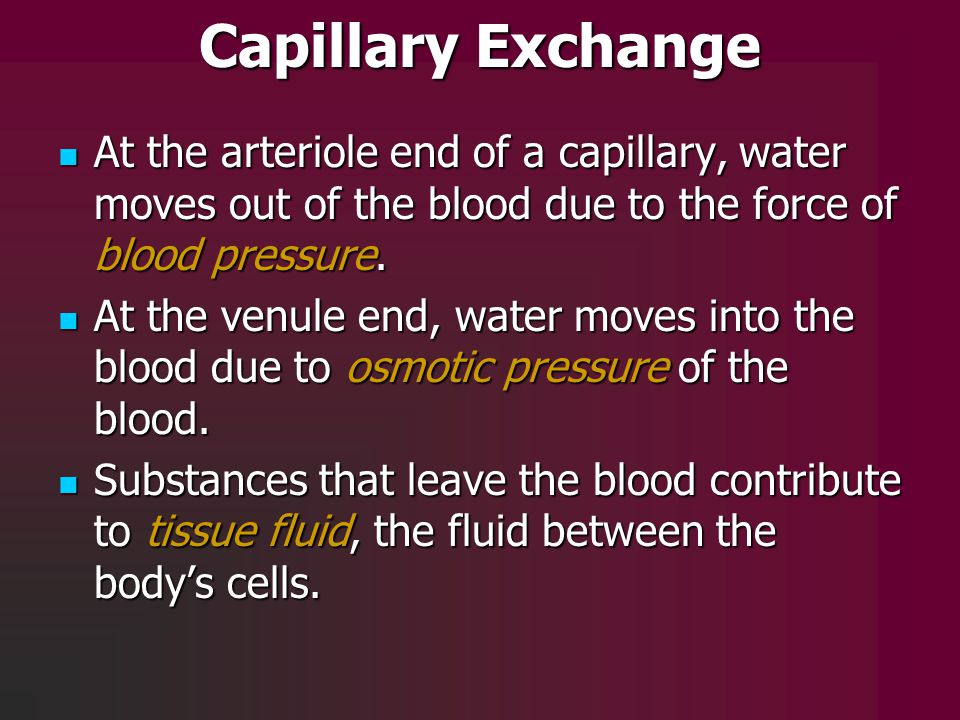 Capillary Exchange At the arteriole end of a capillary, water moves out of the blood due to the force of blood pressure.