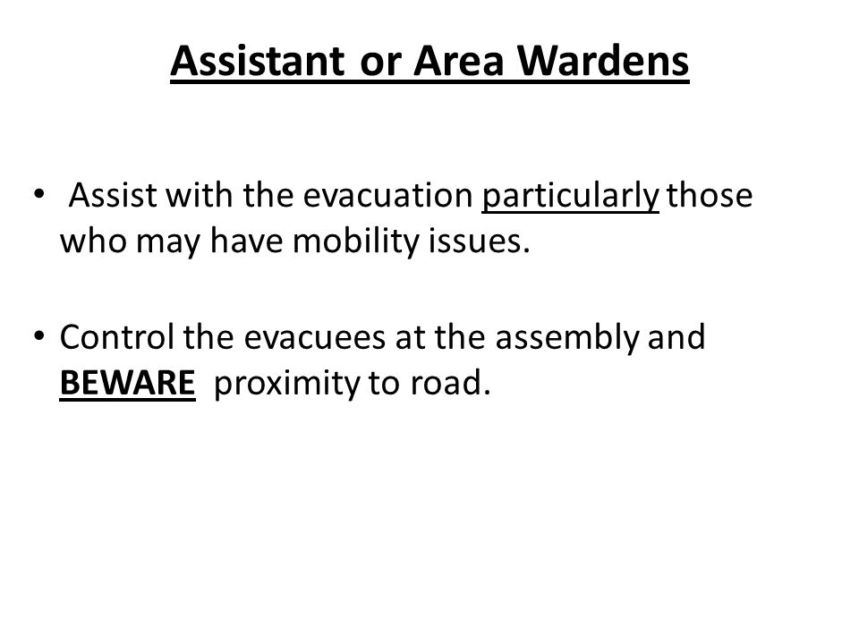 Assistant or Area Wardens