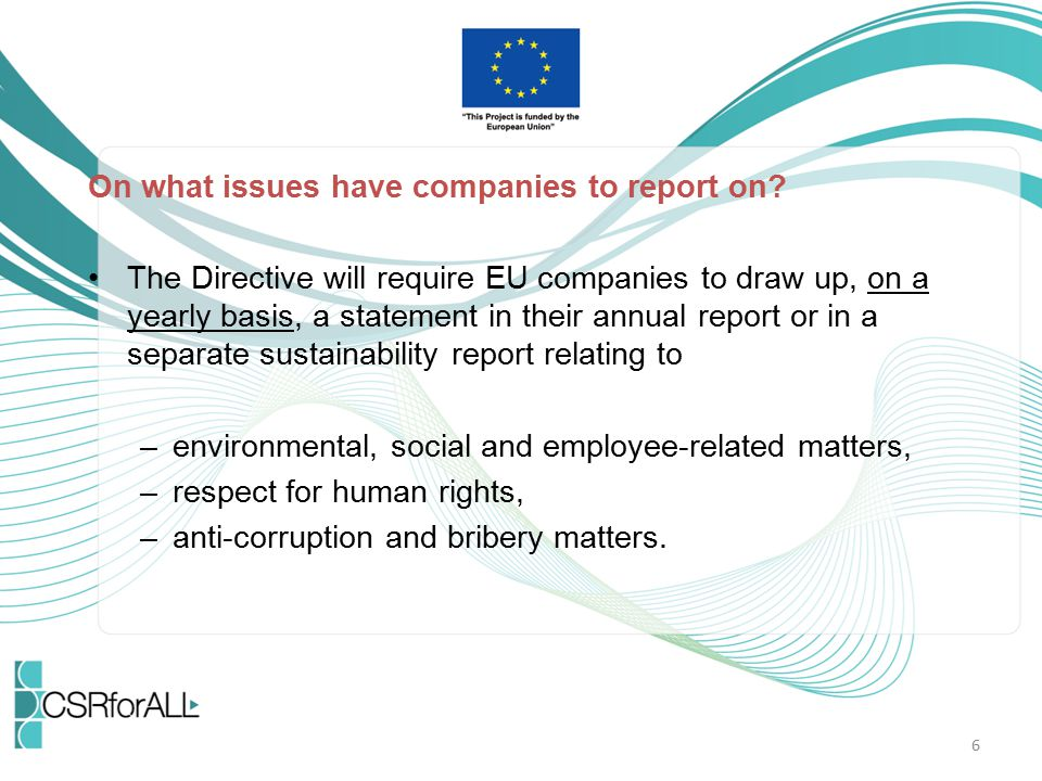 On what issues have companies to report on