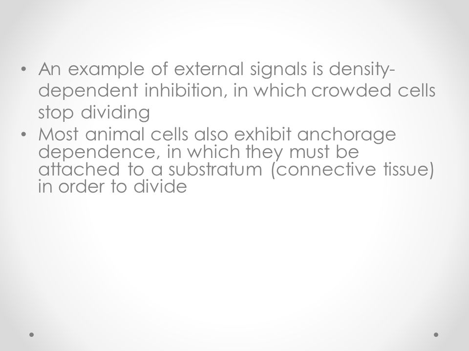 An example of external signals is density-dependent inhibition, in which crowded cells stop dividing