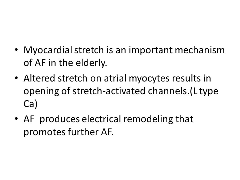 Myocardial stretch is an important mechanism of AF in the elderly.