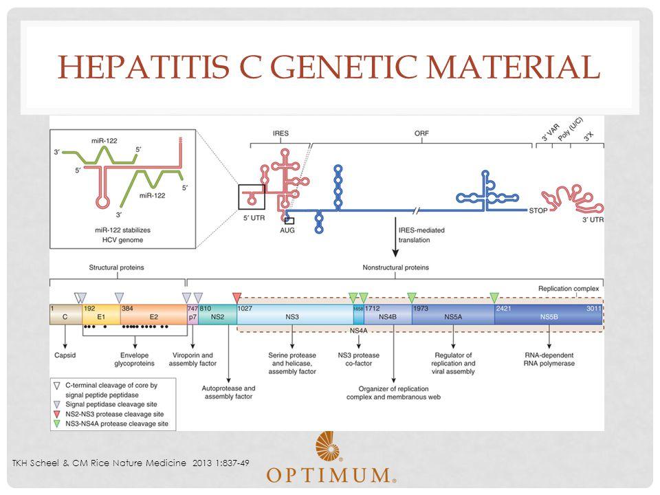 Hepatitis C Genetic Material