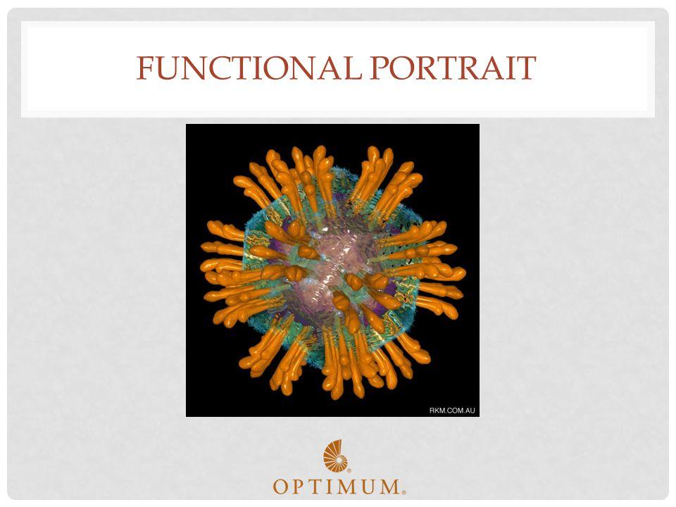 Functional Portrait