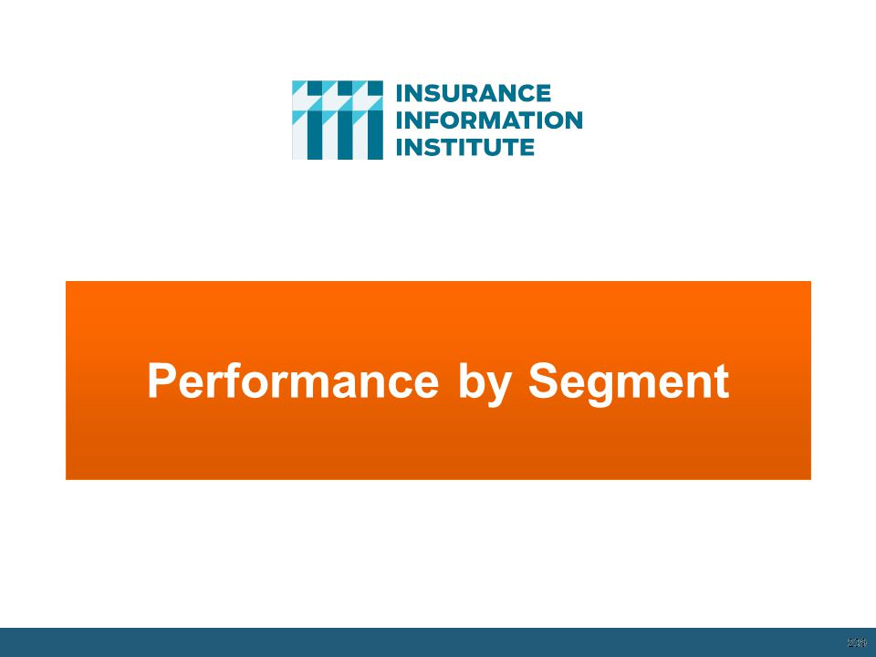Performance by Segment