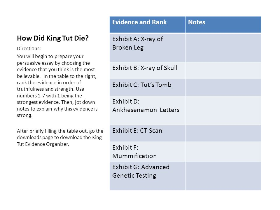 How Did King Tut Die Evidence and Rank Notes