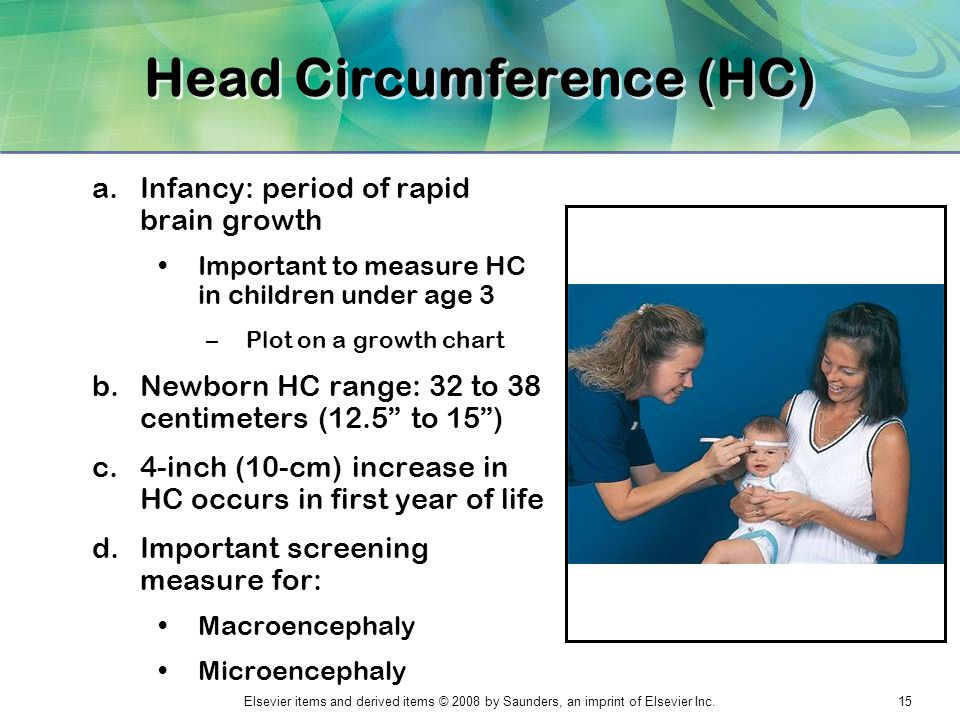 Head Circumference (HC)