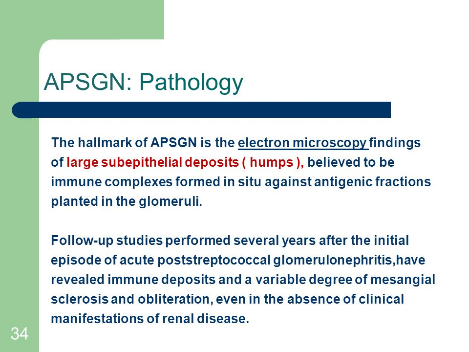 APSGN: Pathology The hallmark of APSGN is the electron microscopy findings. of large subepithelial deposits ( humps ), believed to be.