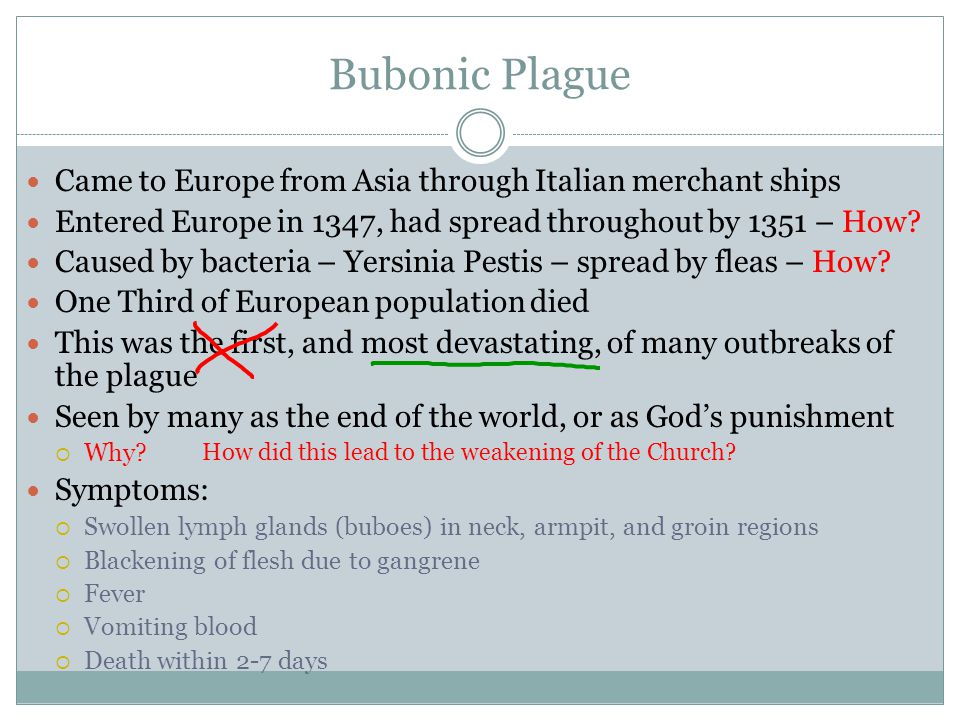 Bubonic Plague Came to Europe from Asia through Italian merchant ships