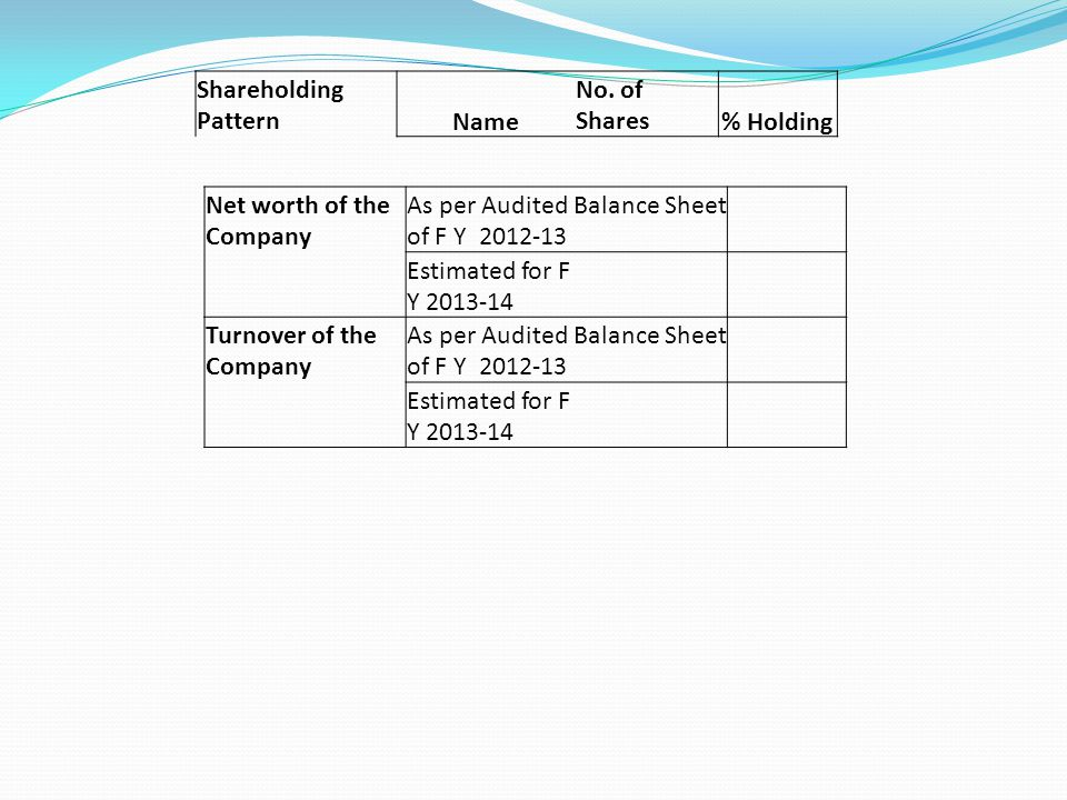 Shareholding Pattern Name. No. of Shares. % Holding. Net worth of the Company. As per Audited Balance Sheet of F Y 2012-13.