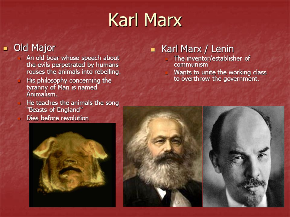 Karl Marx Old Major Karl Marx / Lenin