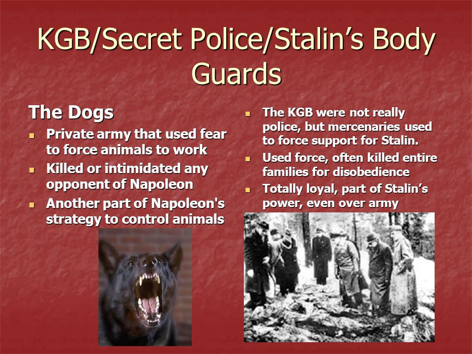 KGB/Secret Police/Stalin's Body Guards