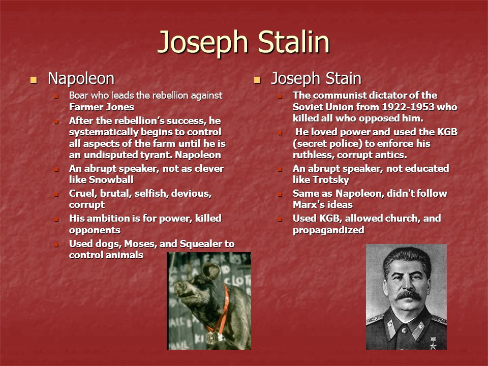 Joseph Stalin Napoleon Joseph Stain