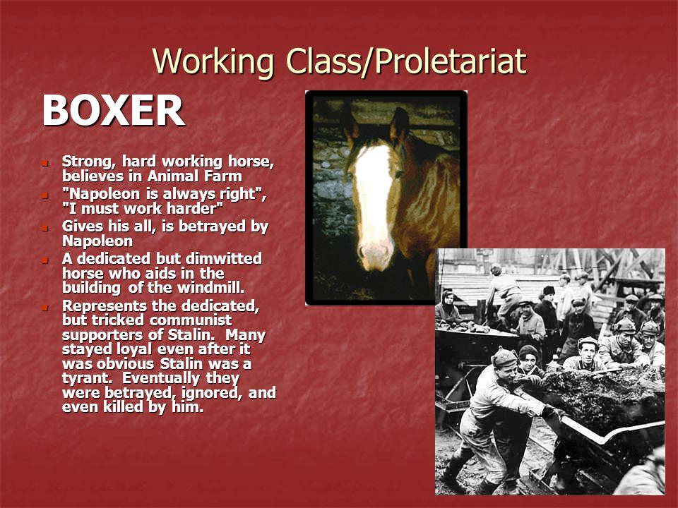 Working Class/Proletariat