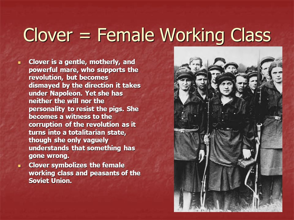 Clover = Female Working Class