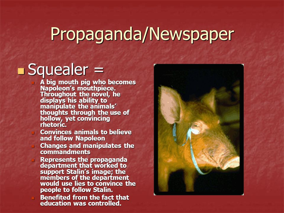 Propaganda/Newspaper