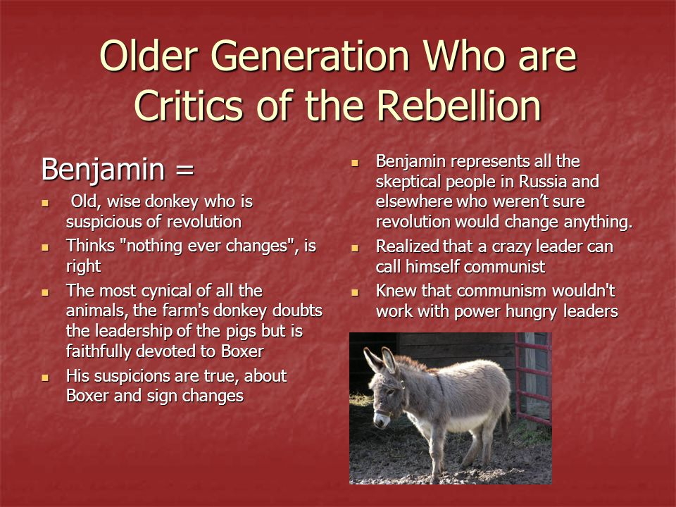 Older Generation Who are Critics of the Rebellion