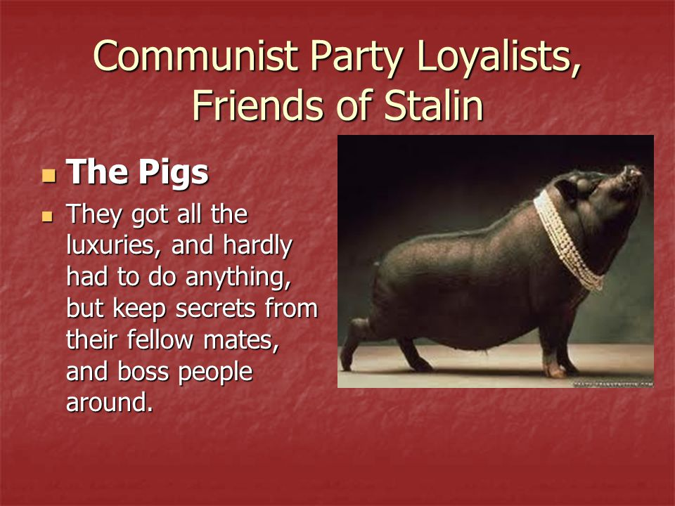 Communist Party Loyalists, Friends of Stalin