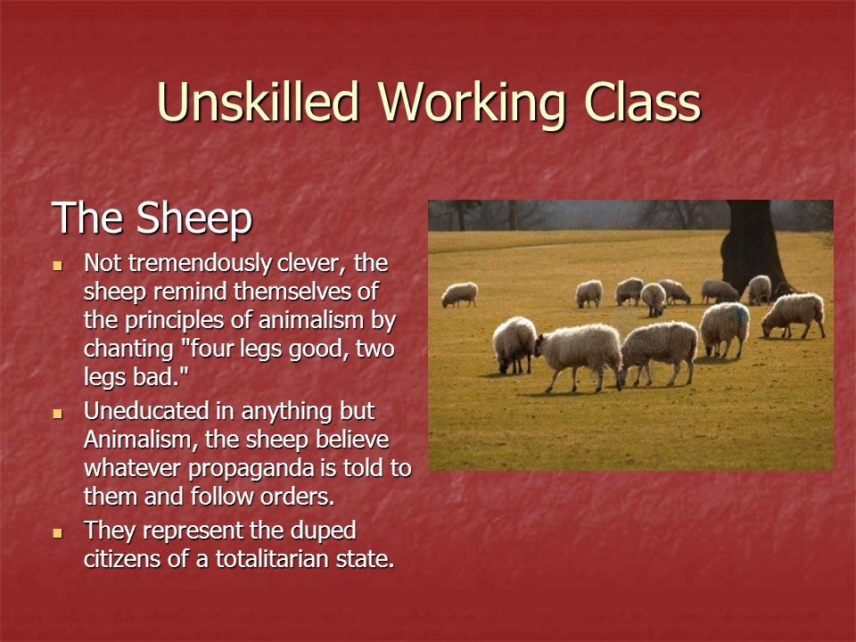 Unskilled Working Class
