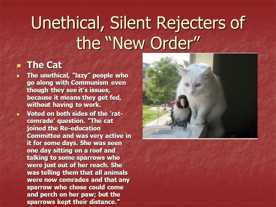 Unethical, Silent Rejecters of the New Order