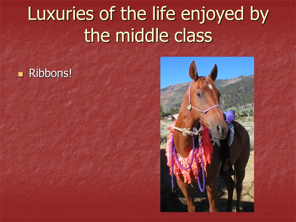 Luxuries of the life enjoyed by the middle class