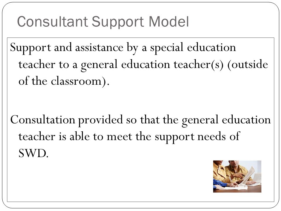 Consultant Support Model