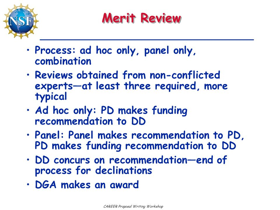 Merit Review Process: ad hoc only, panel only, combination