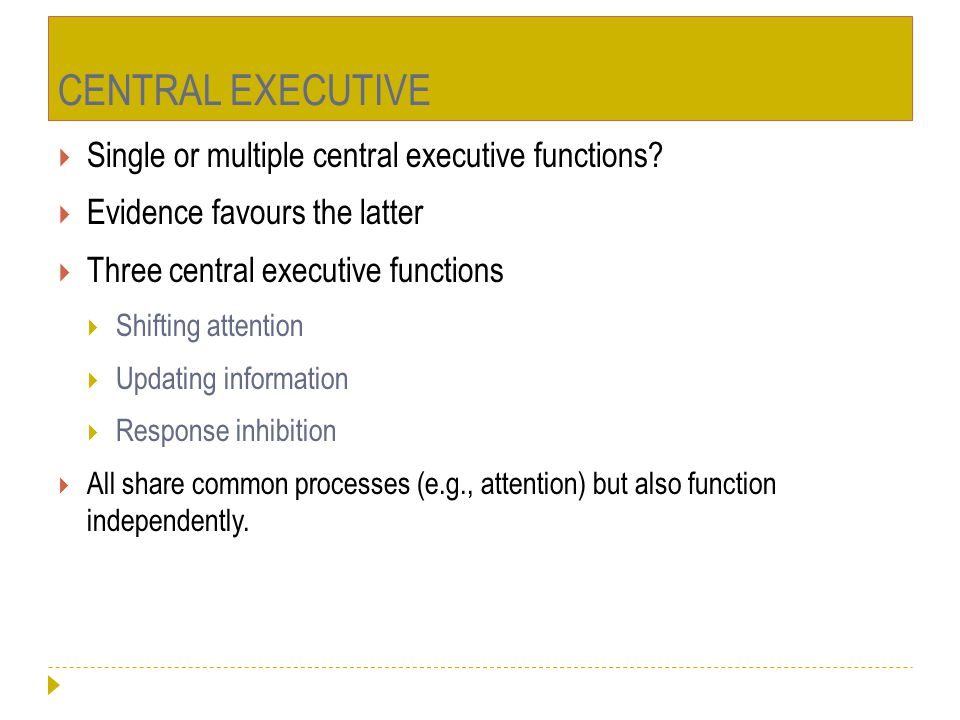 CENTRAL EXECUTIVE Single or multiple central executive functions