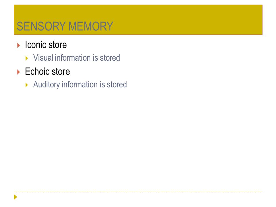 SENSORY MEMORY Iconic store Echoic store Visual information is stored