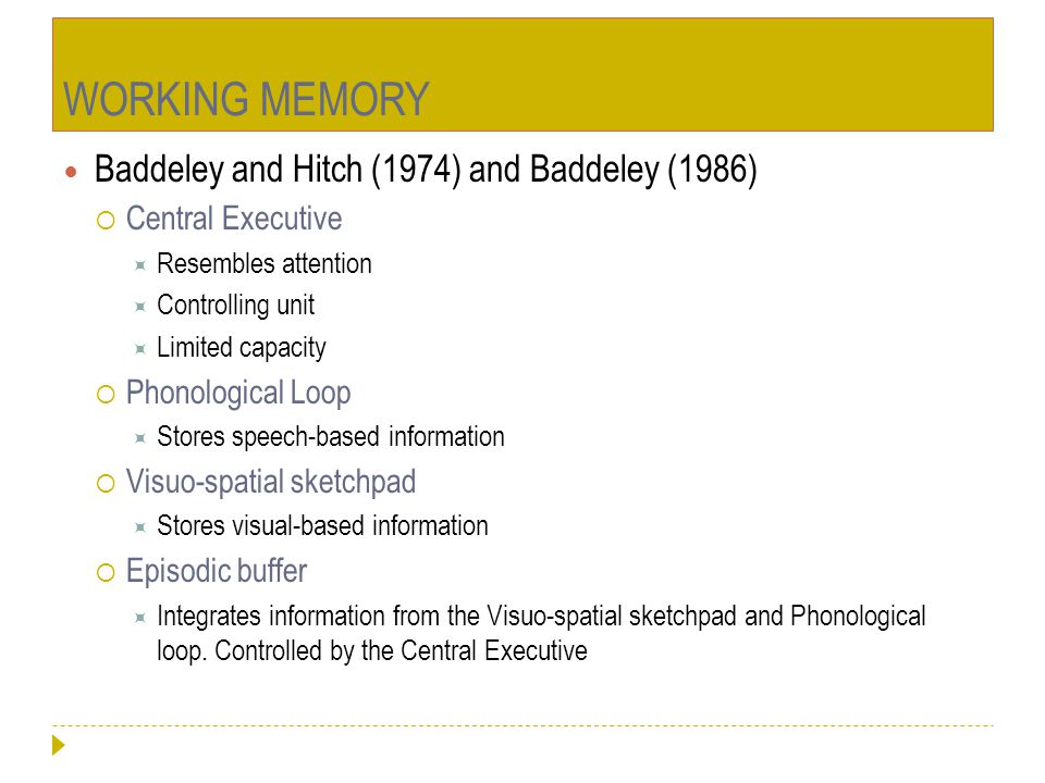 WORKING MEMORY Baddeley and Hitch (1974) and Baddeley (1986)