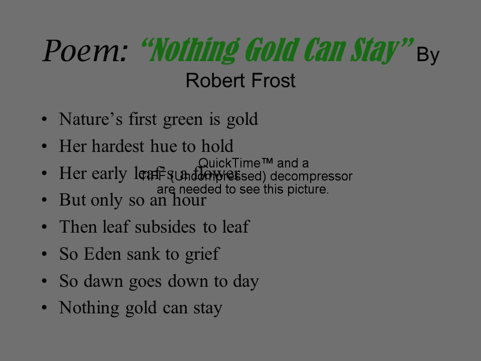 Poem: Nothing Gold Can Stay By Robert Frost