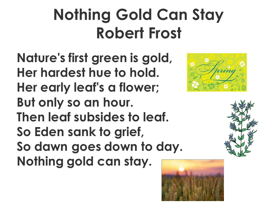 """a review of robert frosts poem nothing gold can stay Robert frost's """"nothing gold can stay"""" is one of the poet's most analyzed/anthologized poems it dramatizes the human desire to retain all things that heart and mind deem worthwhile or """"golden."""